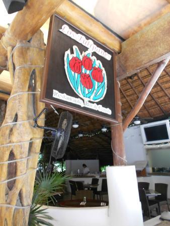 Los Tulipanes Restaurante, Bar & Cenote: ENTRANCE