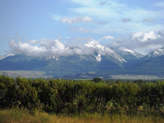 Log House RV Park & Campground: View of Wallow Mtns from Log House RV Park