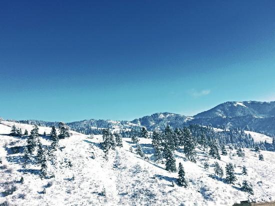 Pioneer Inn Condominiums: Mountain snow