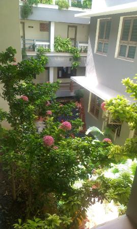 New Guest House: plantation at the guest house