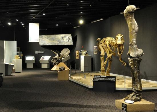 ... Mesalands Community College's Dinosaur Museum, Tucumcari - TripAdvisor