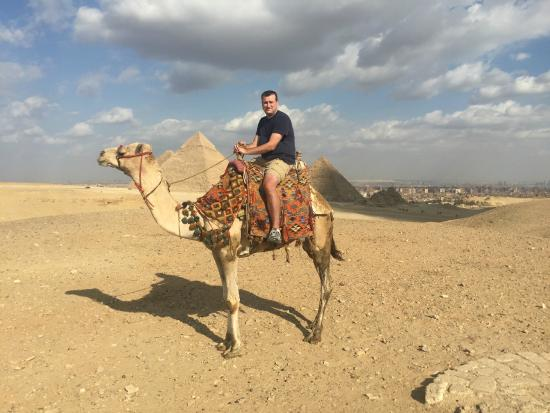 Ramasside Tours: Camel Riding