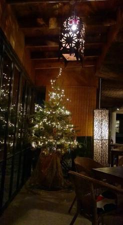 Oasis Cafe: Beautiful and elegant Christmas decoration.