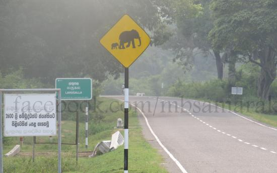 Ampara, Sri Lanka: Lahugala Kitulana National Park
