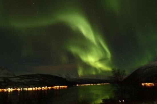 Fjellkysten : Unforgettable