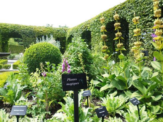 Jardim Picture Of Jardin Des Cinq Sens Yvoire Tripadvisor