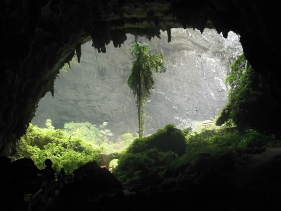A Bear at Baimo Cave?