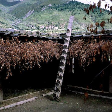 Gongga Temple: Typische Stiege in einem Tibethaus am Weg zum Kloster