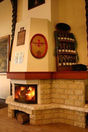 Restaurant Diana: Fireplace at Diana restaurant