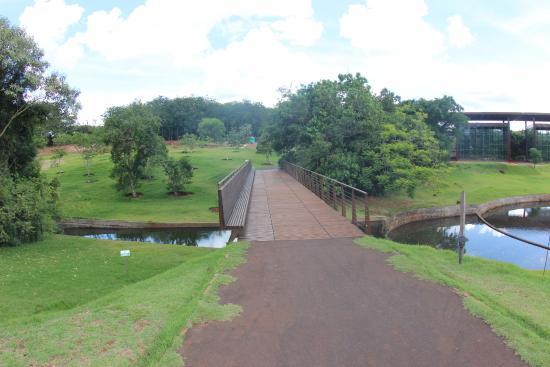 fotos jardim botanico de londrina:Jardim Botânico de Londrina – Foto di Jardim Botanico de Londrina