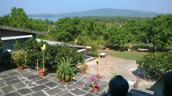 Mahua Bagh Resort : view from our room