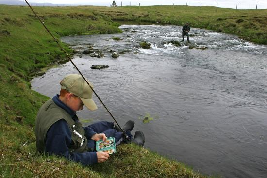 Fishing in iceland arctic char picture of for Fishing in iceland