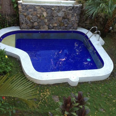Eco del Mar: Piscina