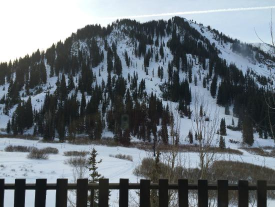 Alta's Rustler Lodge: Gorgeous view from our room
