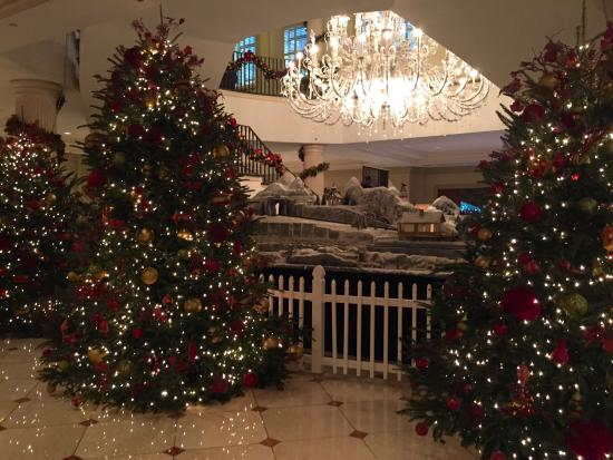 belmond charleston place many beautifully decorated christmas trees - Beautifully Decorated Christmas Tree Images