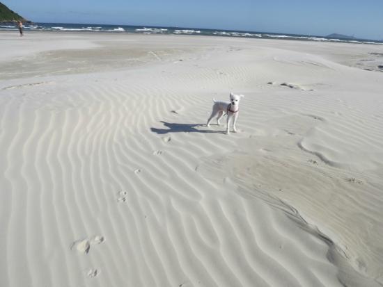 Barra de Ibiraquera Beach: areia bem branquinha
