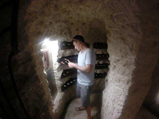 Enormous Wine Cellar : Huge underground wine cellar running beneath xcaret park