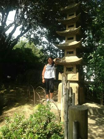 The San Mateo Japanese Garden: relax