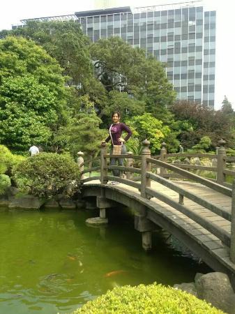 The San Mateo Japanese Garden : paisaje lindo