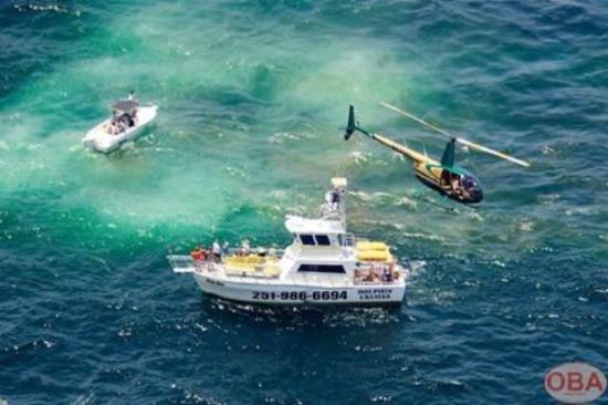Ft Morgan  Picture Of Orange Beach Helicopter Tours Orange Beach  TripAdv