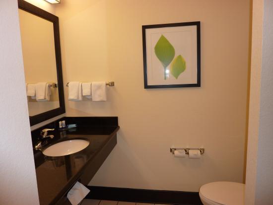 Fairfield Inn & Suites St. Augustine I-95 : sdb