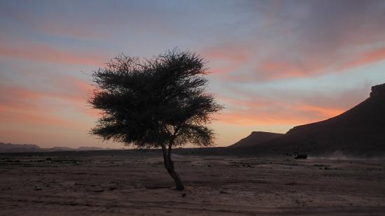 Riad Nomad: paysage