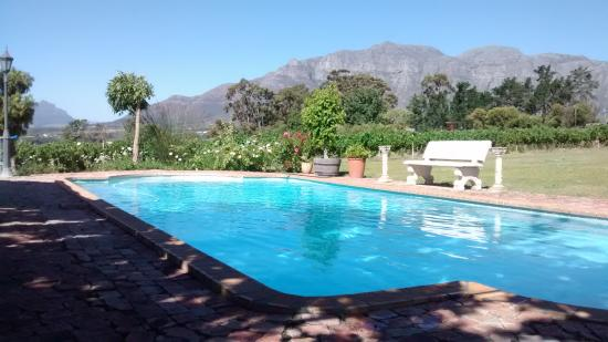 Bellevue Manor Guesthouse : Pool with incredible views