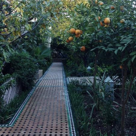 Le Jardin des Biehn: Garden