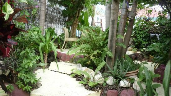 La Fringale : le jardin patio restaurant