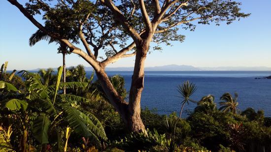 Casa Coco & Coco Cabana: The view