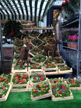 Columbia Road Flower Market: Christmas wreaths