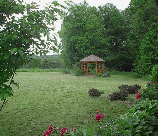 Locust Brook Lodge Bed & Breakfast: View from front garden