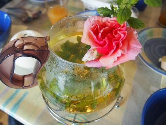 Hagal Healing Farm : Tea from the garden