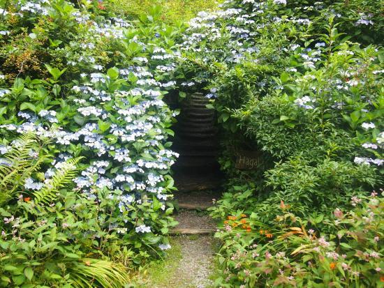 Hagal Healing Farm: Magical Tunnel