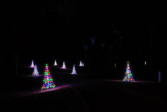 christmas - Picture of Chickasaw State Park, Henderson - TripAdvisor