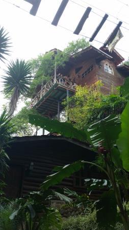 Hotel Monte Campana: vista desde abajo