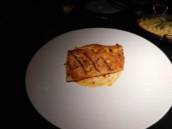 Seven: yellow tail snapper