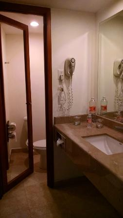 Fiesta Inn Monterrey Tecnologico: Bathoom with shower only and small toilet