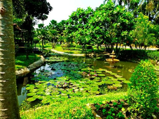 Doi Saket, Thailand: Tweechol Botanic Garden & Horison Village