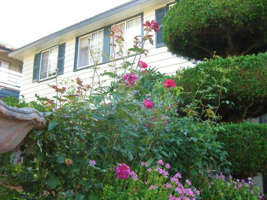 Laguna Beach Motor Inn: exterior of other rooms