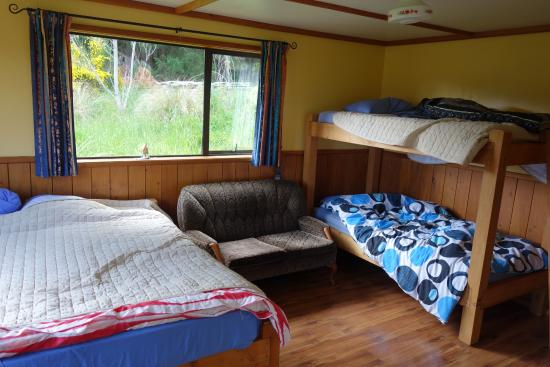 Freestone Backpackers : Comfy family room