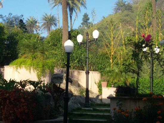 Hotel Shiv Villa: Garden within Shiv Villa