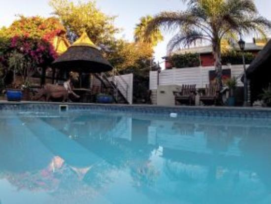 Chameleon Backpackers pool