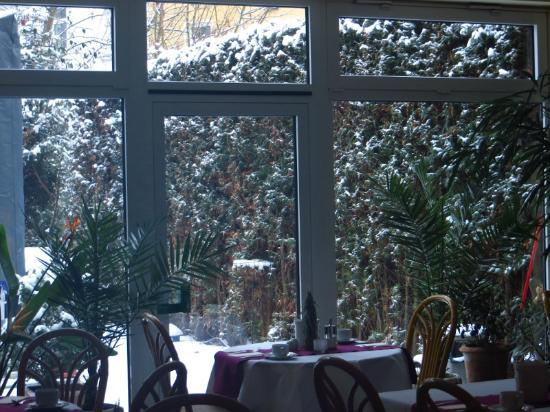 Amadeo Hotel Garni: Wintergarten