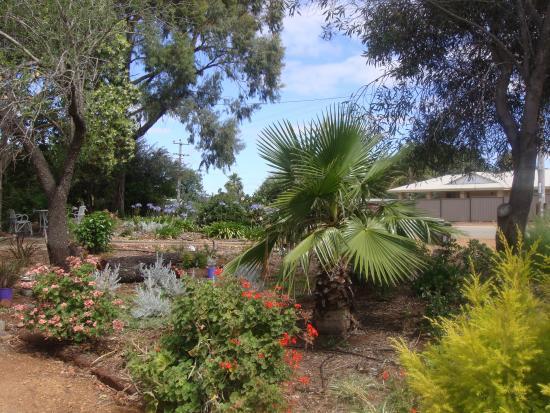 Bella's Country Place: garden