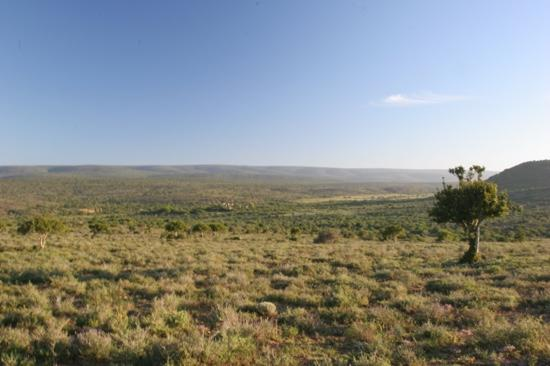 Kwandwe Uplands Homestead: Uplands Homestead in its glorious isolation
