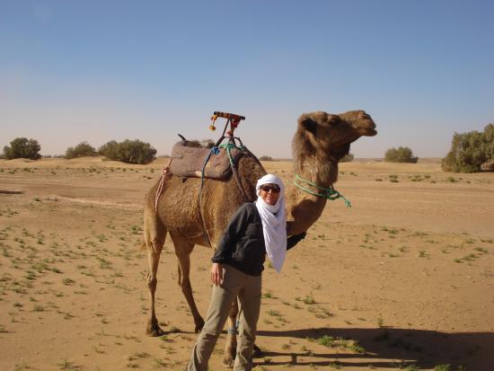 Riad Dar Zampa: ... zwischendurch auf Wüstentour