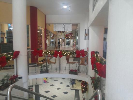 Shopping Omar
