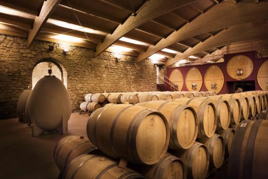 Bodegas y Vinedos Gomez Cruzado