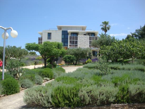 Hotel Amor : lovely gardens